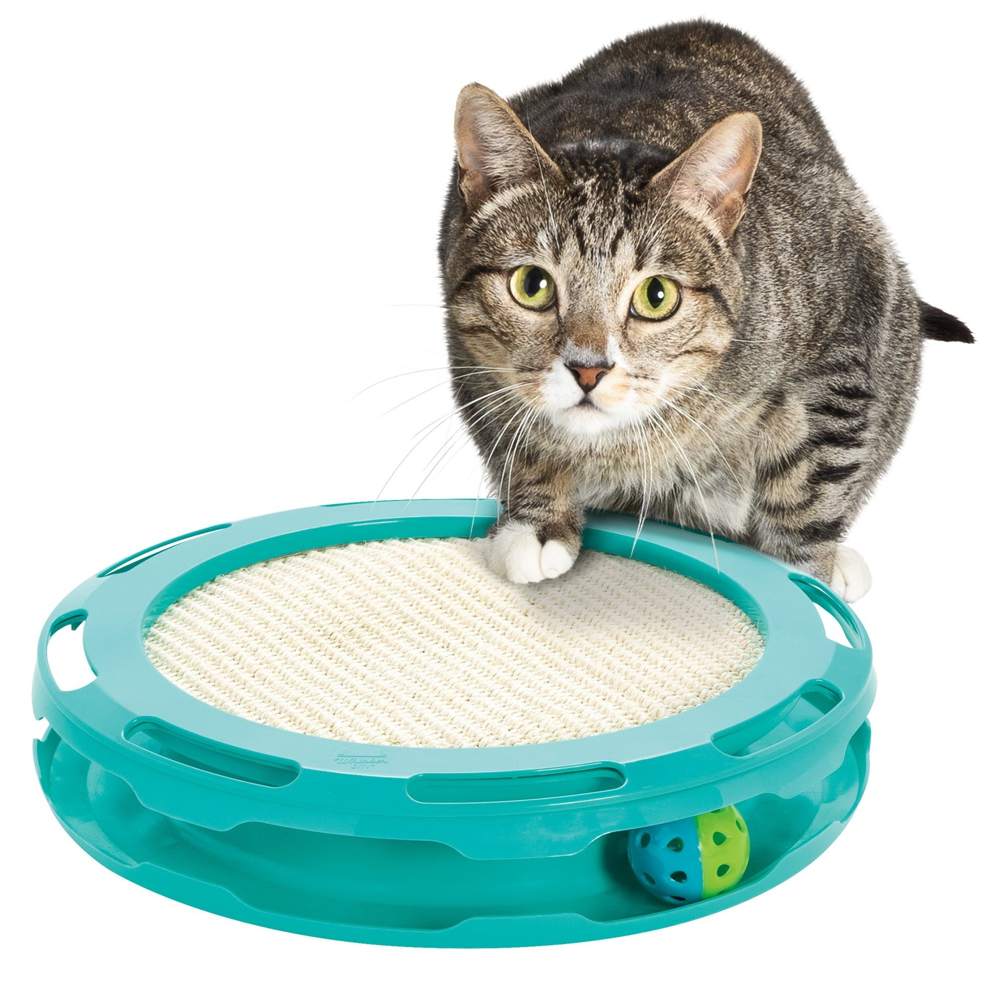 Ball Track-Scratcher Cat Toy