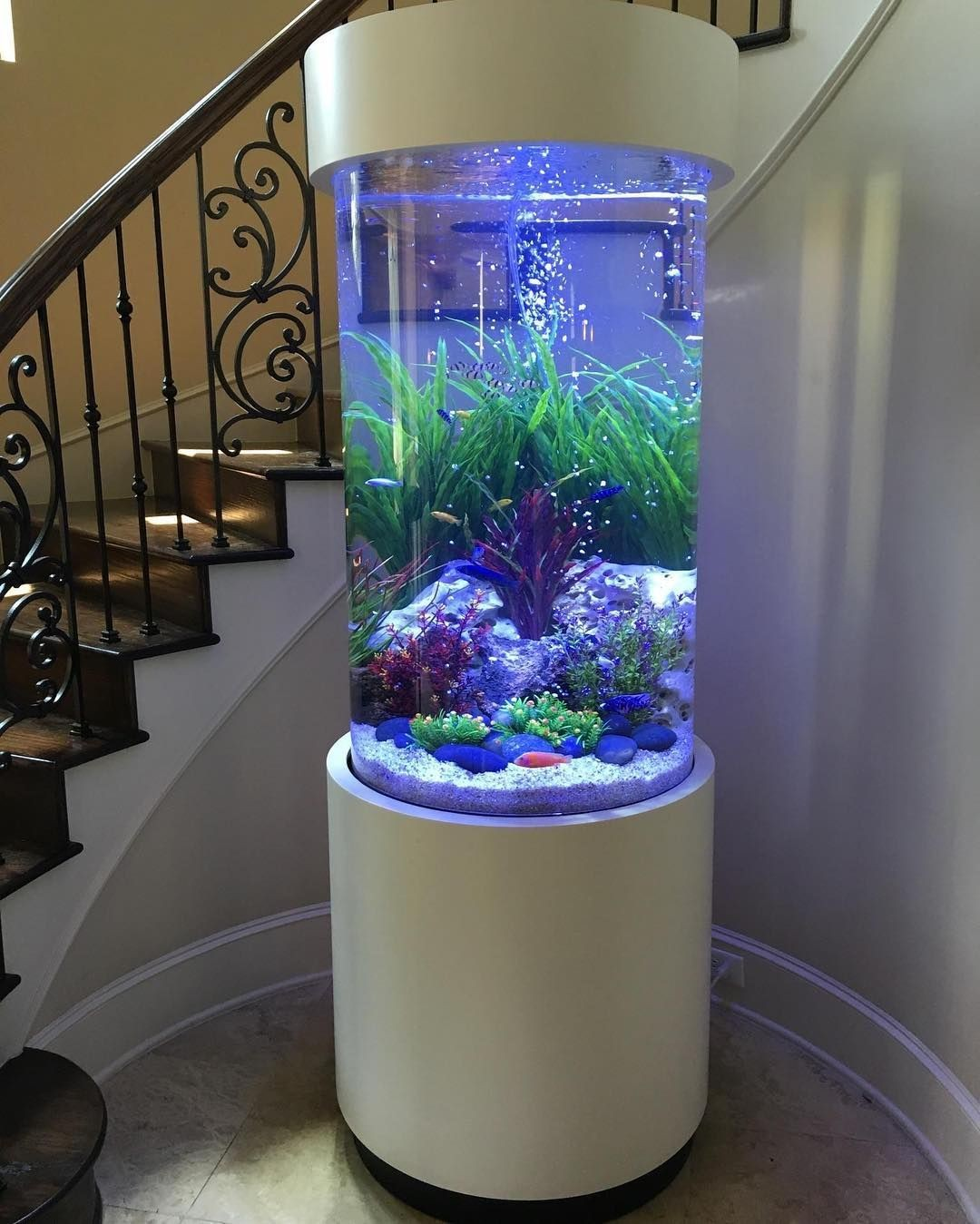 Circulating Water Fish Tank