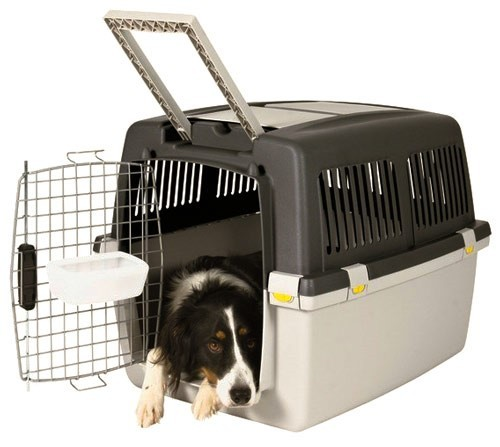 Indoor dog Crate Cage