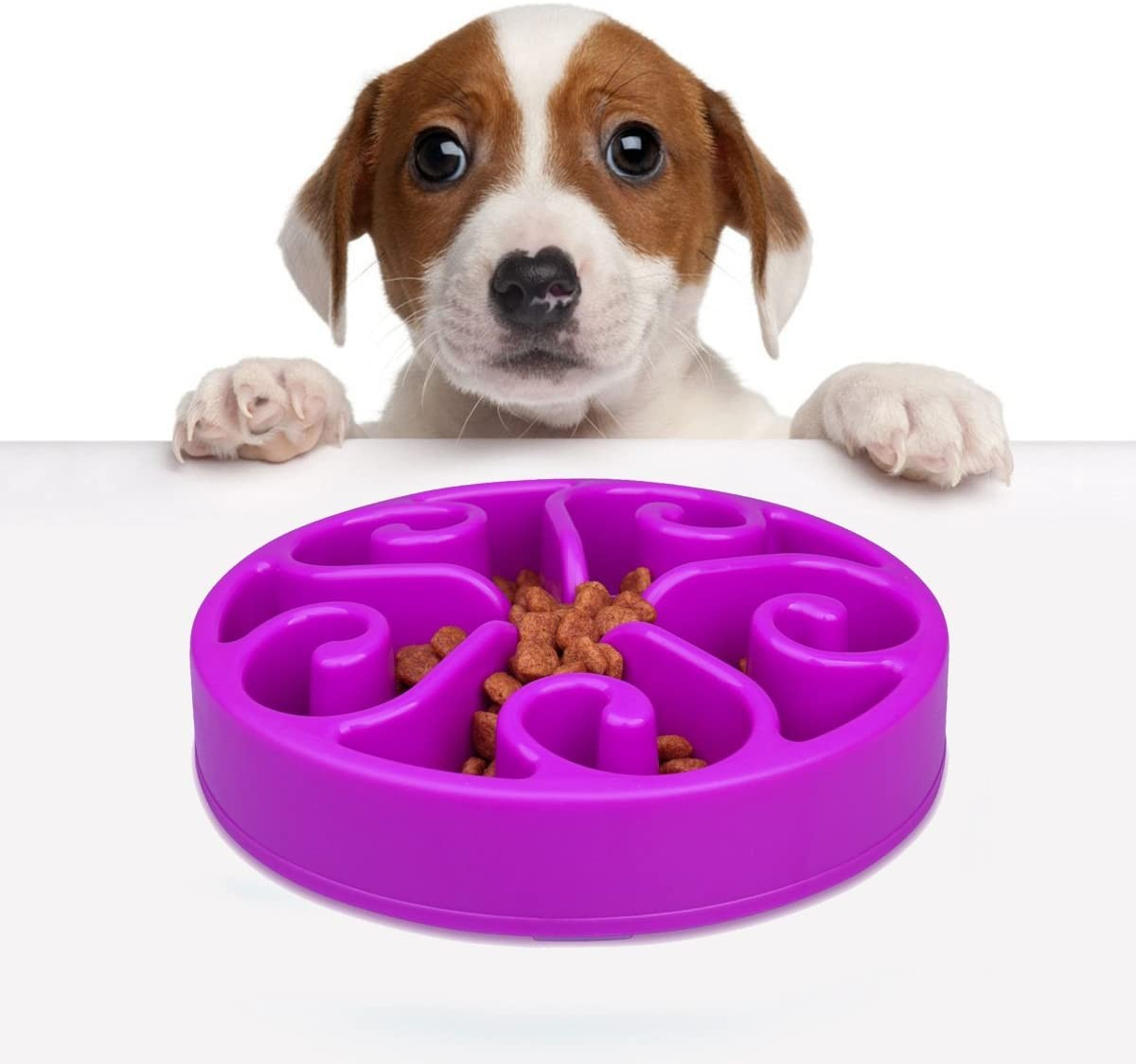 Pandamen Dog Bowl Feeder